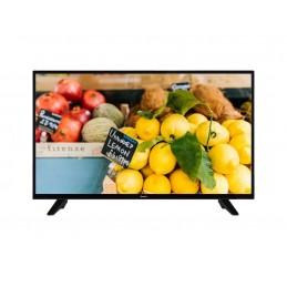 Televizor LED Quadro LED-43FHD081
